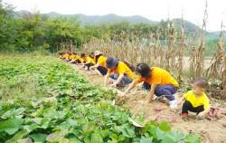 서울시와 농협중앙회는 도시가족 주말농부 프로그램을 운영 중이다.