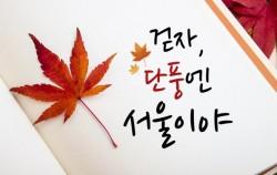 걷자, 단풍엔 서울이야