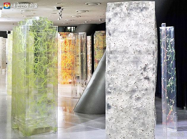 얽히고 설킨 실기둥, 이은숙 작가의 `서울의 주` 전시 ⓒ김윤경