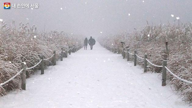 눈 내리는 겨울엔 운치 있는 설원이 되는 하늘공원 ⓒ김종성