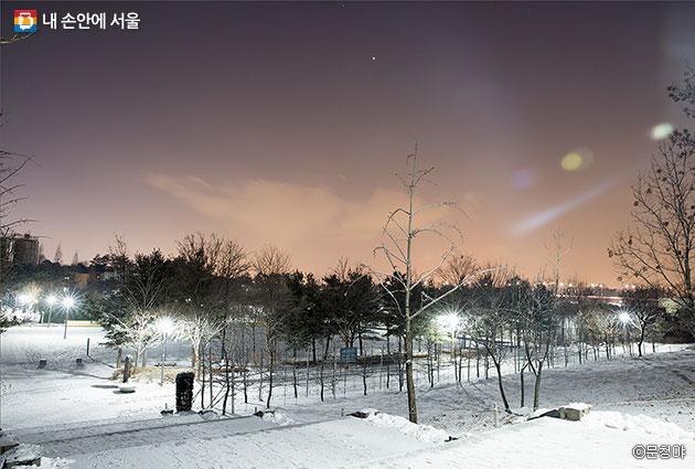 하얗게 눈 덮인 서울숲 풍경 ⓒ문청야