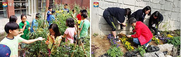 성동구 응봉초등학교 공동체정원 조성 모습(좌), 서초구 동덕여고 공동체정원 조성 모습(우)