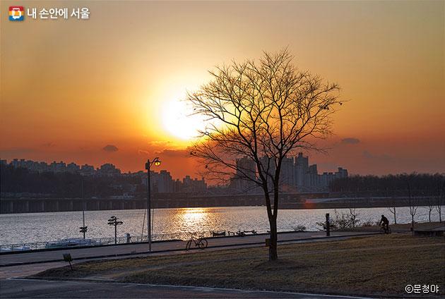 겨울나무와 함께 붉게 물드는 한강 노을 풍경 ⓒ문청야