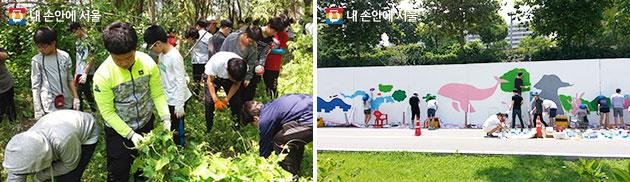 한강지킴이 생태계 교란식물 제거 활동 모습(좌), 기획봉사단체 예술팀 활동 모습(우)