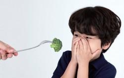 채소를 싫어하는 어린이