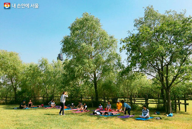 월드컵공원에서 건강 체조 프로그램에 참여하고 있는 시민들