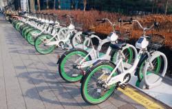 서울시 공공자전거 따릉이ⓒ호미숙