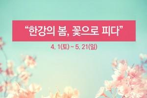 [카드뉴스] 한강봄꽃축제 누구와 즐겨도 좋아!
