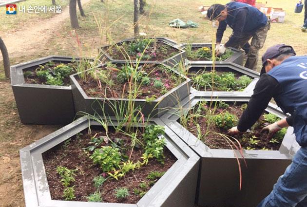 플랜터박스에 식물을 식재하는 교육생들