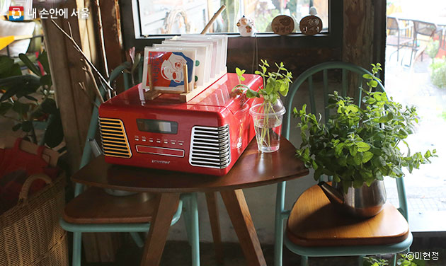 집안에 식물을 배치하면 인테리어 효과뿐 아니라 공기정화 효과까지 얻을 수 있다. ⓒ이현정