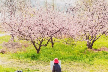 [미션]봄꽃_봄을 그리다.