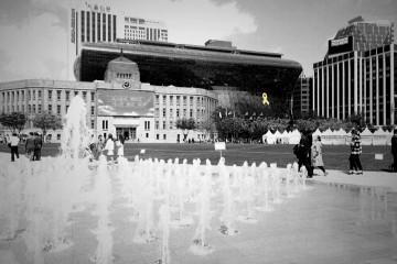[미션] 2016년 봄의 시청…