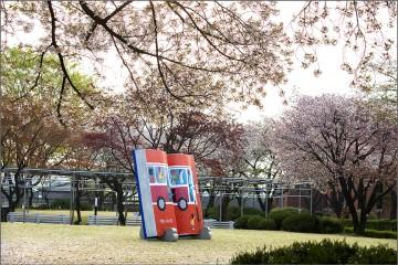 [미션] 봄꽃-정독도서관 벚꽃