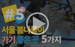 서울 봄나들이 명소 TOP5