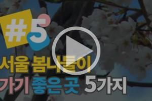 """[영상] """"넌 나의 봄이다!"""" 서울 봄나들이 명소"""