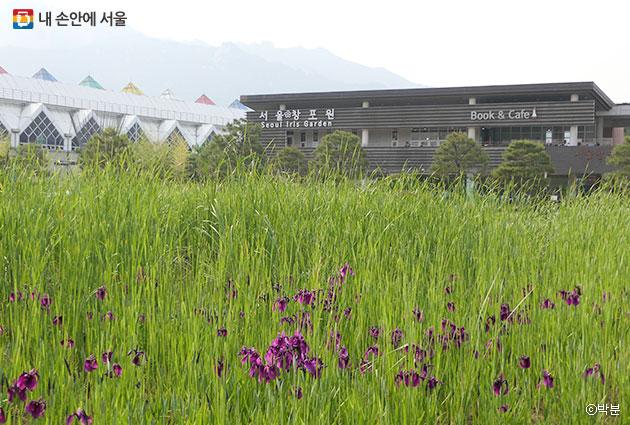 도봉산역(좌측 흰 건물)과의 접근성이 좋은 서울창포원 ⓒ박분