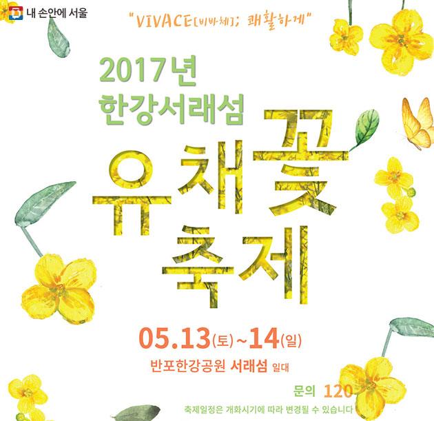 2017년 한강서래섬 유채꽃 축제