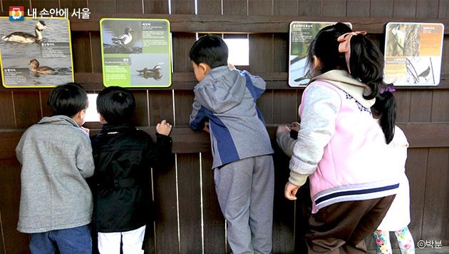 강서습지생태공원 조류전망대에서 새를 관찰하고 있는 아이들 ⓒ박분