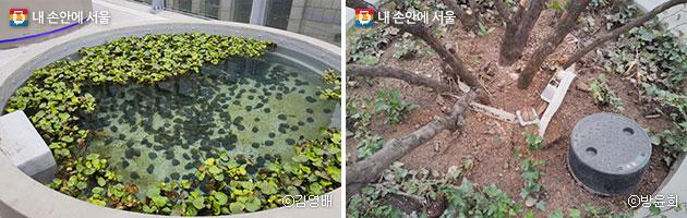 서울로 고가에서는 645개의 식물을 만날 수 있다(좌)ⓒ김영배, 원형 화분 속에 저장판 모양의 저류시설과 단열재가 설치되어 있다(우)ⓒ방윤희
