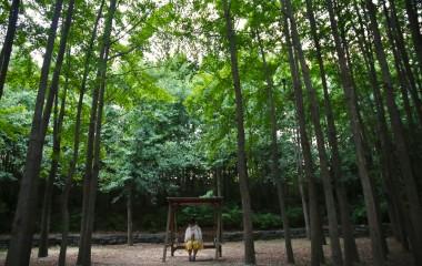 숲속의 쉼터