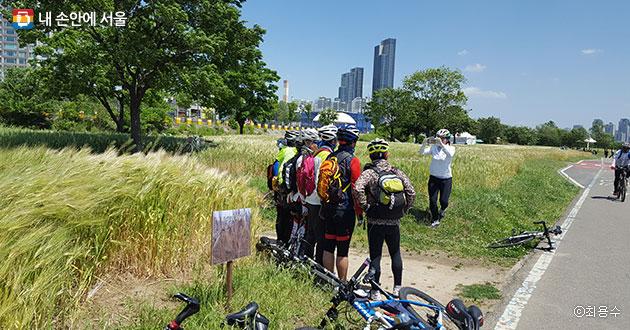 라이딩을 멈추고 흑색보리밭에서 기념사진을 찍는 자전거 동호회원들 모습 ⓒ최용수