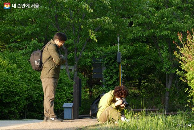 풀꽃을 카메라에 담고 있는 아내를 바라보는 남편 ⓒ김영옥
