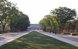 서울대공원 동물원 가는 길 입구숲 모습
