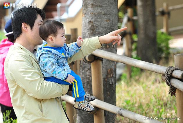 아빠들의 육아 및 육아 휴직 증가 추세에 맞춰, 서울시는 `찾아가는 아빠 육아 지원사업`을 실시한다 ⓒ뉴시스