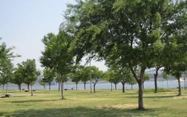 뚝섬한강공원에서는 서늘한 강바람에 더위를 식힐 수 있다. ⓒ박은영
