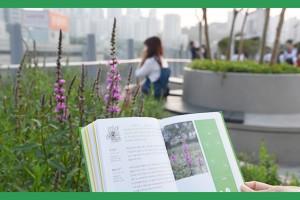 7017 거닐 때 챙기세요 '서울로 식물산책'