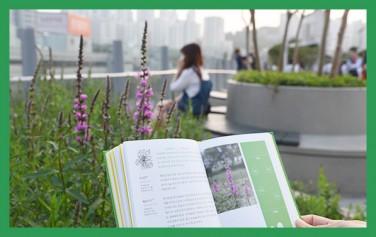 서울로 식물 산책
