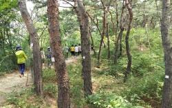 노인과 어린아이들도 쉽게 걸을 수 있는 남산 숲길 ⓒ 김영자