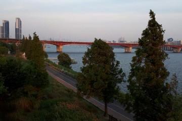 한강의 여름 전경