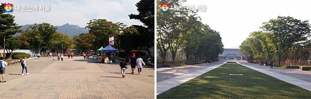 서울대공원 동물원 가는 길 (사진왼쪽) 과거 공사 전 모습, (사진 오른쪽) 현재 공사 후 입구숲 모습