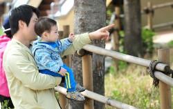 아빠들의 육아 및 육아 휴직 증가 추세에 따라, 서울시는 `찾아가는 아빠 육아 지원사업`을 실시하고 있다.ⓒ뉴시스