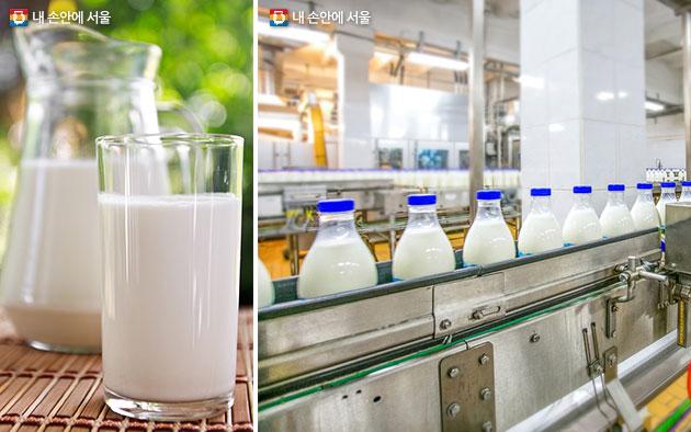 우유, 우유공정