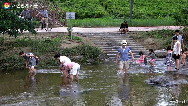 홍제천에서 조개를 줍는 동네 주민들ⓒ김종성