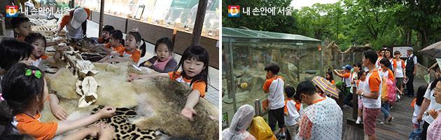 서울동물원 가족캠프