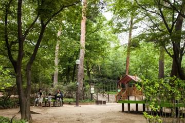 삼청공원 녹음길 나들이