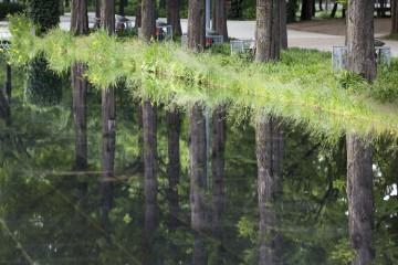 서울숲 거울연못