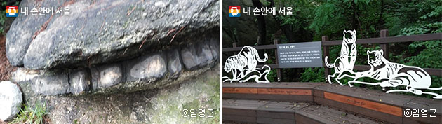 이빨바위의 모습(좌), `인(仁)의 동물, 호랑이` 상징물(우) ⓒ임영근
