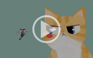 귀여운 고양이의 모기 피하는 방법