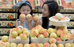 여름 과일 복숭아는 `미인과일`로도 불리는데, 미백, 주름개선 등 효과가 있다 ⓒ뉴시스