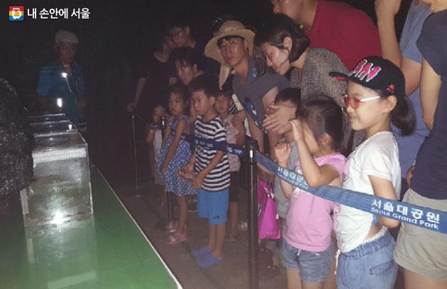 반딧불이를 체험하는 가족단위 참여자