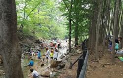 진관사 계곡 하류 마실 근린공원의 계곡에서 물놀이하는 아이들 모습 ⓒ최용수
