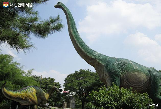 노원구 중계근린공원에 설치된 공룡 모형은 영화 쥬라기공원 세트장과 같은 실사 크기로 제작했다. ⓒ박은영