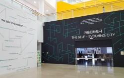 자율진화해가는 서울?!