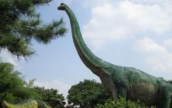 중계 근린공원에 공룡이 산다?!