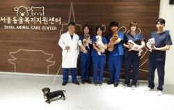 반려동물 행동교정에 입양·교육까지...동물복지지원센터 개원