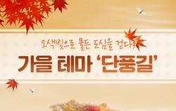 가을 테마 `단풍길`